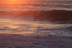 Серфер в Сан-Франциско приземляется конец Стоковое Изображение RF