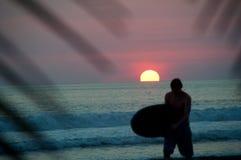 серфер захода солнца Стоковое Изображение