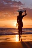 серфер захода солнца девушки Стоковые Изображения