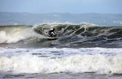 серфер океана Стоковое Изображение