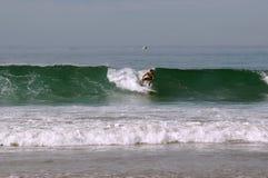 Серфер свертывает на surfboard на волне в Тихом океане Стоковые Изображения