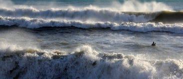 серфер levanto стоковая фотография