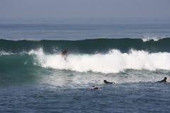 Серфинг в Бали Индонезии Стоковые Фото