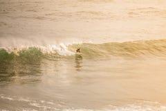 Серфинг в утре стоковые изображения rf