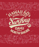 Серфинг Гаваи Стоковое Изображение RF