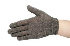 Серые изолированные перчатки Стоковое Фото