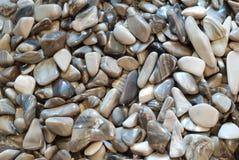 серые камушки Стоковое Изображение