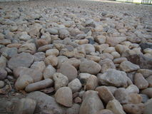 серые камушки Стоковая Фотография