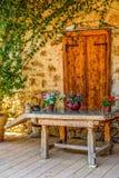 Серые кот и опарник с цветками на деревянном столе в ферме стоковое фото