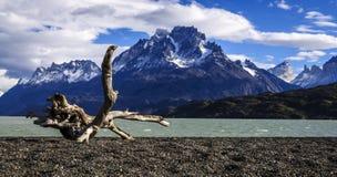 Серые озеро и горы в национальном парке Torres del Paine, Chil Стоковая Фотография RF