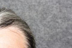 Серые люди волос Стоковые Фото
