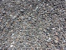 Серый гонт Стоковое Фото