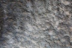 Серый и белый декоративный гипсолит Стоковое Фото