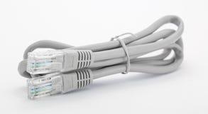 Серый кабель Lan на белой предпосылке Стоковое Изображение RF
