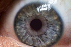 Серый конец зрачка глаза вверх стоковые изображения