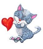 Серый кот с красным сердцем влюбленности Стоковые Изображения RF