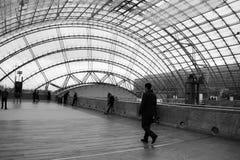 Серый ходок Стоковая Фотография RF
