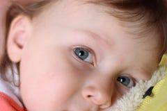 серый цвет глаза Стоковое фото RF