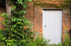 серый цвет двери Стоковые Фото