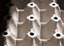 Серый цвет рециркулирует сформированный бумажный поднос яичка картона Стоковые Изображения RF
