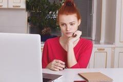 Серьезная сфокусированная студентка носит красный свитер, имеет умоляющее возникновение, работу с портативным портативным компьют Стоковые Изображения RF
