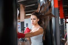 Серьезный спортсмен боксера бьет грушу indoors стоковое изображение