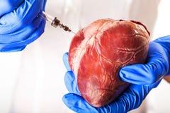 Сердечная болезнь Стоковое Фото