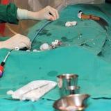 Сердечная команда деятельности хирургии Стоковая Фотография