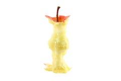 сердечник яблока Стоковое Изображение RF