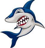 сердитая акула Стоковые Фото