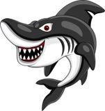 Сердитая акула Стоковая Фотография