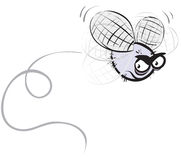 сердитая муха Стоковые Изображения