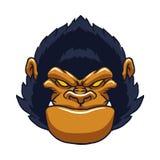 Сердитая сторона гориллы обезьяны Стоковая Фотография RF