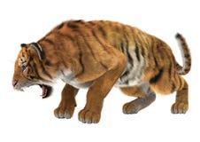 1 сердитая черная белизна версии тигра halftone цвета 2 Стоковое Фото