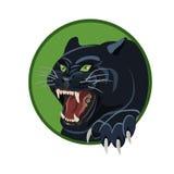 Сердитая черная пантера Стоковые Фото