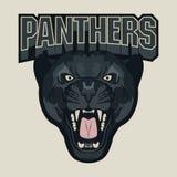 Сердитая эмблема команды спорта пантеры Стоковые Изображения RF