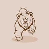 сердитое гризли медведя Стоковая Фотография