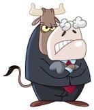 сердитое дело быка Стоковая Фотография RF