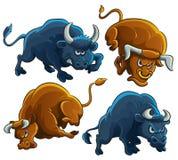 сердитые быки Стоковая Фотография RF