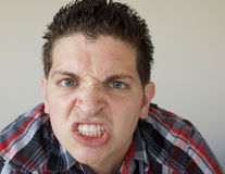 сердитые детеныши человека Стоковое Изображение