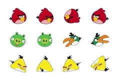 Сердитые птицы Стоковое Изображение RF