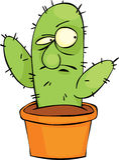 сердитый кактус Стоковые Изображения