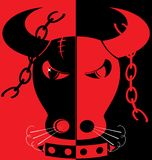 сердитый красный цвет быка черноты предпосылки Стоковое Изображение