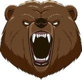 Сердитый талисман головы медведя иллюстрация штока