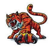 сердитый тигр Стоковое Изображение RF