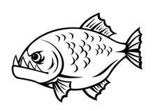 Сердитый piranha Стоковое Изображение RF