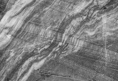 Сер-и-белая мраморная текстура Стоковые Изображения