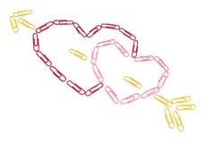 Сердца бумажных зажимов Стоковое Изображение RF