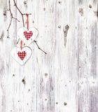 2 сердца, вися на ветви Стоковое Изображение