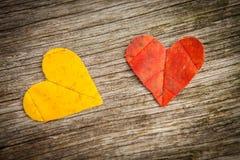 Сердца влюбленности листьев осени Стоковые Изображения